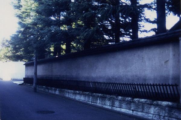 Taiyaki04